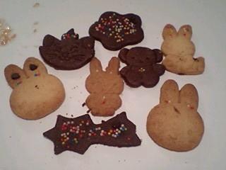 20090730cookie1.jpg