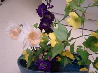 2009416flower2.jpg