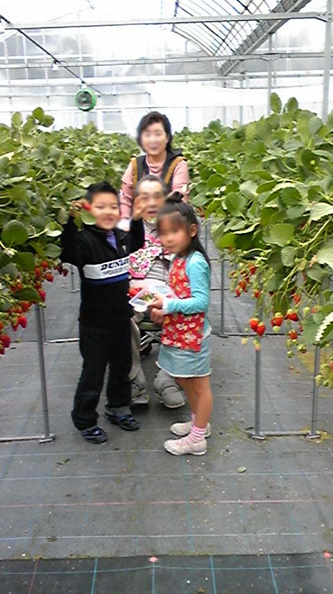 2009strawberry1.jpg