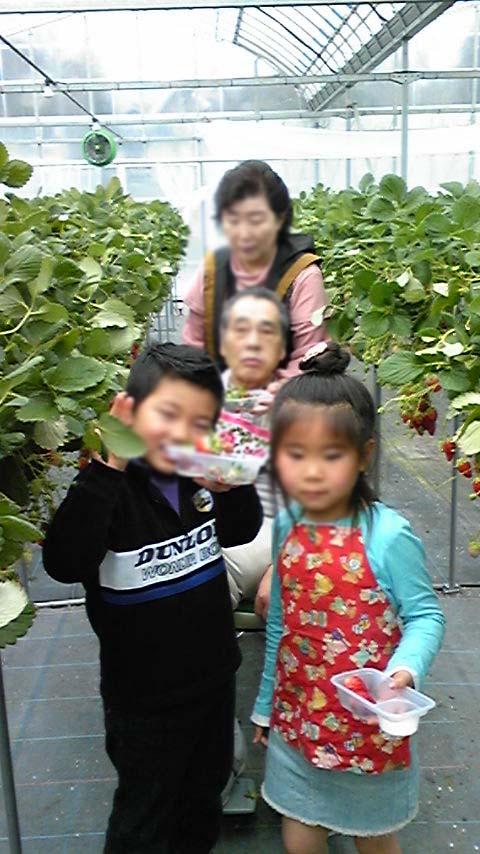 2009strawberry2.jpg