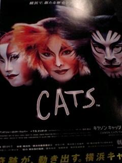 20100106cats.jpg