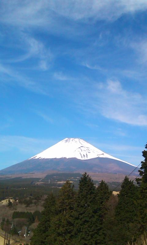 2010120201.jpg