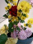 flower01232.jpg