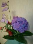 flower07121.jpg
