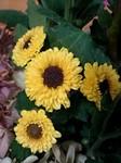 flower10303.jpg