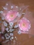 flower12062.jpg