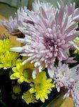 flower12312.jpg