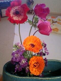 20090423flower.jpg