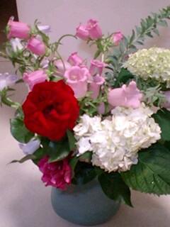 20090609flower1.jpg