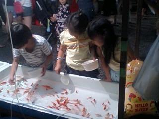 20090809Goldfish.jpg
