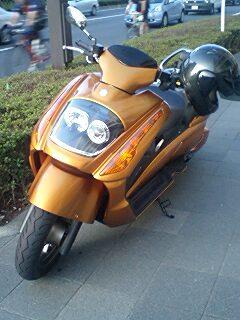 20090810bike1.jpg