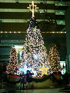 20091211illumi1.jpg