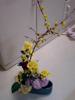 flower01231.jpg