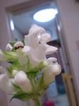 flower06072.jpg