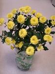 flower10223.jpg