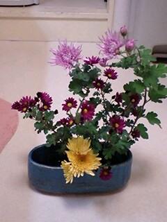 flower12041.jpg