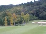 golf2008102.jpg