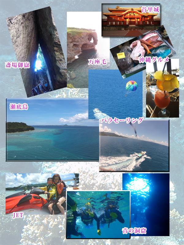 okinawea.jpg