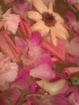 weddingflower2.jpg